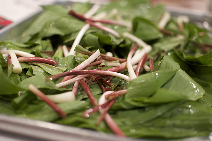 ramps for pesto